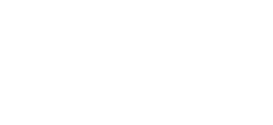 ApexNetwork Physical Therapy Franchise